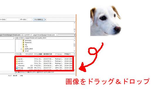 ファイルアップロード説明2